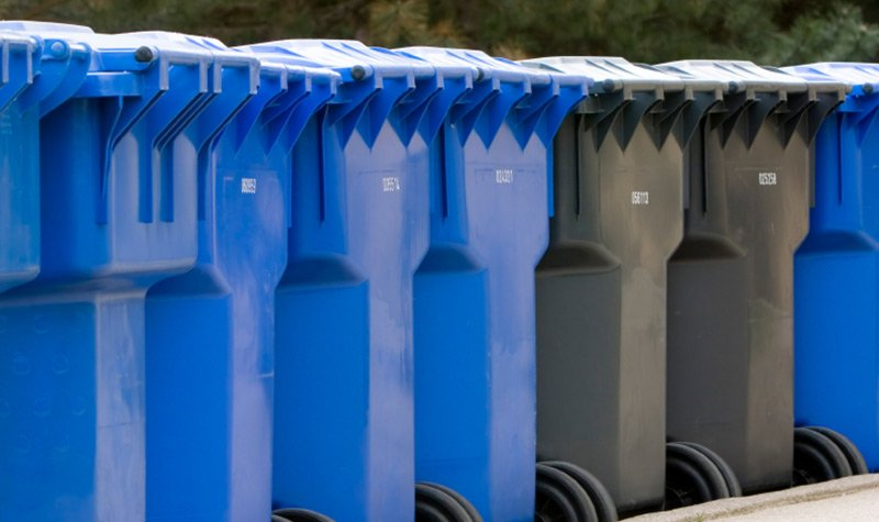 Photo of residential waste bins lined up in a row.